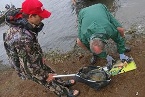 Roman from Team Rapala Weighs in a bag of fish
